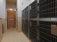 facilities08_01