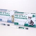 ネコちゃんのフィラリア予防