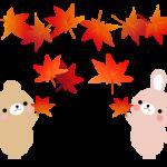 ☆秋の健康診断のお知らせ!☆(10月~12月)